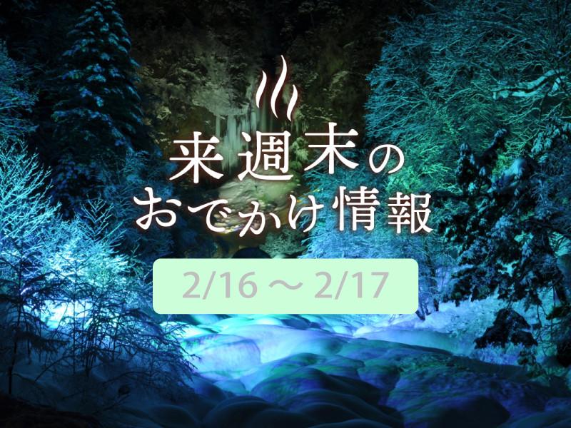 祭 和歌山 ばく